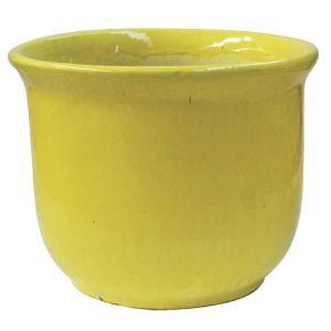 Astral Planter Atomic Yellow