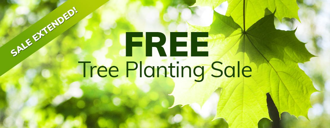 FREE Tree Planting Sale Extended